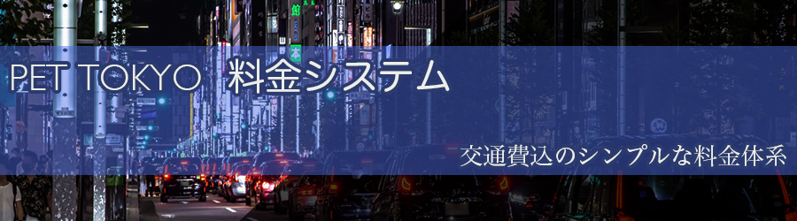 東京売り専PET東京システム